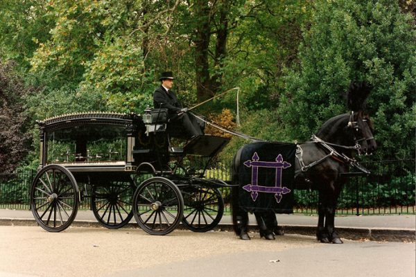 fleet_horse__carriage_s._pk__large