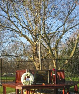 memorial_garden_memorial_tree_and_bench__large